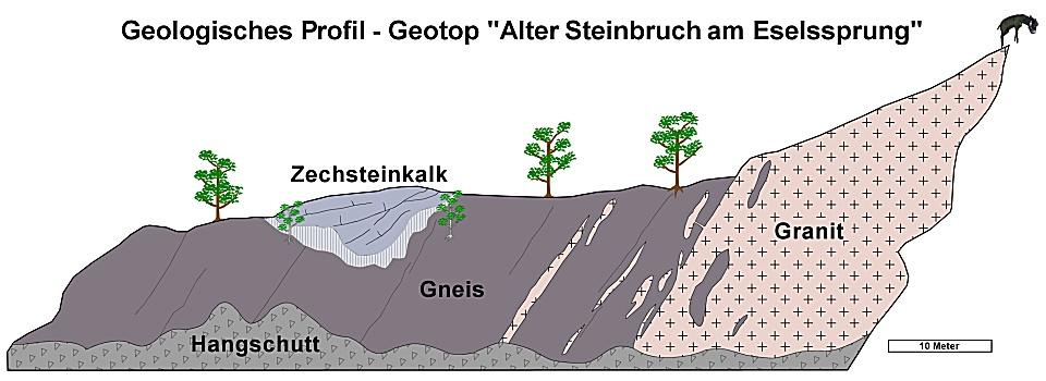 Profil Eselssprung Westwand