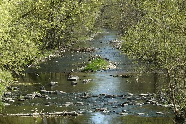 Fluss Apfelstädt