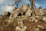 Ruhlaer Granit am Glöckner/Rennsteig bei Ruhla