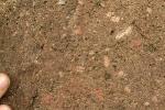 Ganggestein im zusammengesetzen Gang der Geologischen Wand Elmenthal