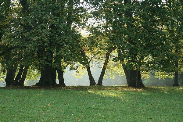 Landschaftspark Altenstein